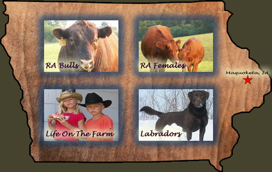 Whitney Way Farms - Welcome to Whitney Way Farms, providers